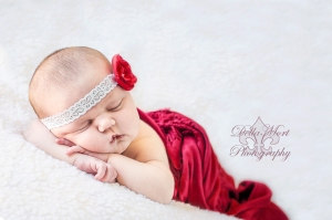Newborn Photographer in Gresham Oregon